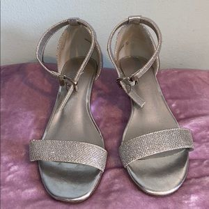 Shinny silver woman's wedges